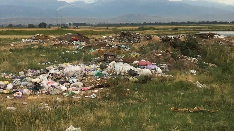 В селе Каирма жители устроили стихийную свалку, - горожанка Асель