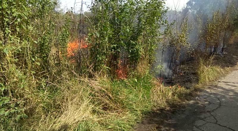 Пожар на территории Ботсада в Бишкеке. Видео