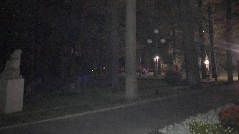 Горожанин жалуется на отсутствие освещения в Дубовом парке