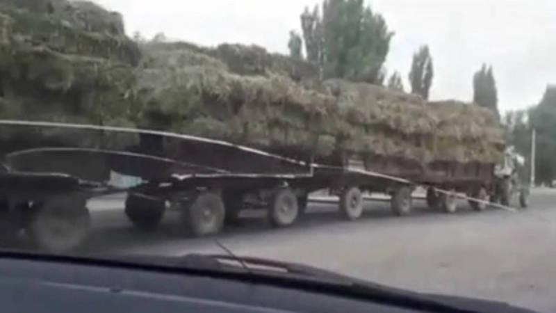 Трактор везет 4 телеги с тюками сена. Видео очевидца