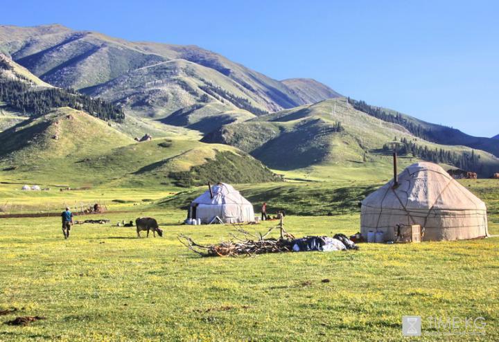 Парки и заповедники Кыргызстана kg Это Кулунатинский государственный заповедник Он был образован в 2004 году в целях сохранения биоразнообразия богатого генофонда арчово хвойных лесов