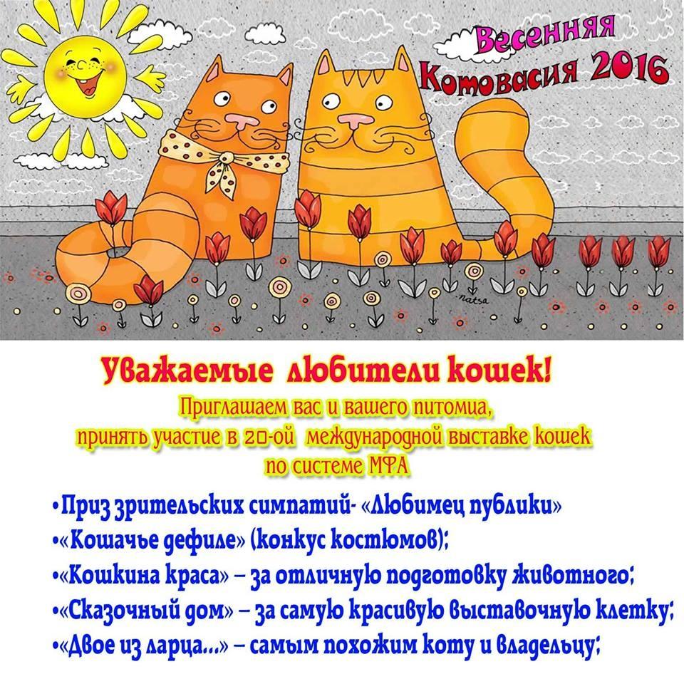 2016-03-02_16-01-31_861880