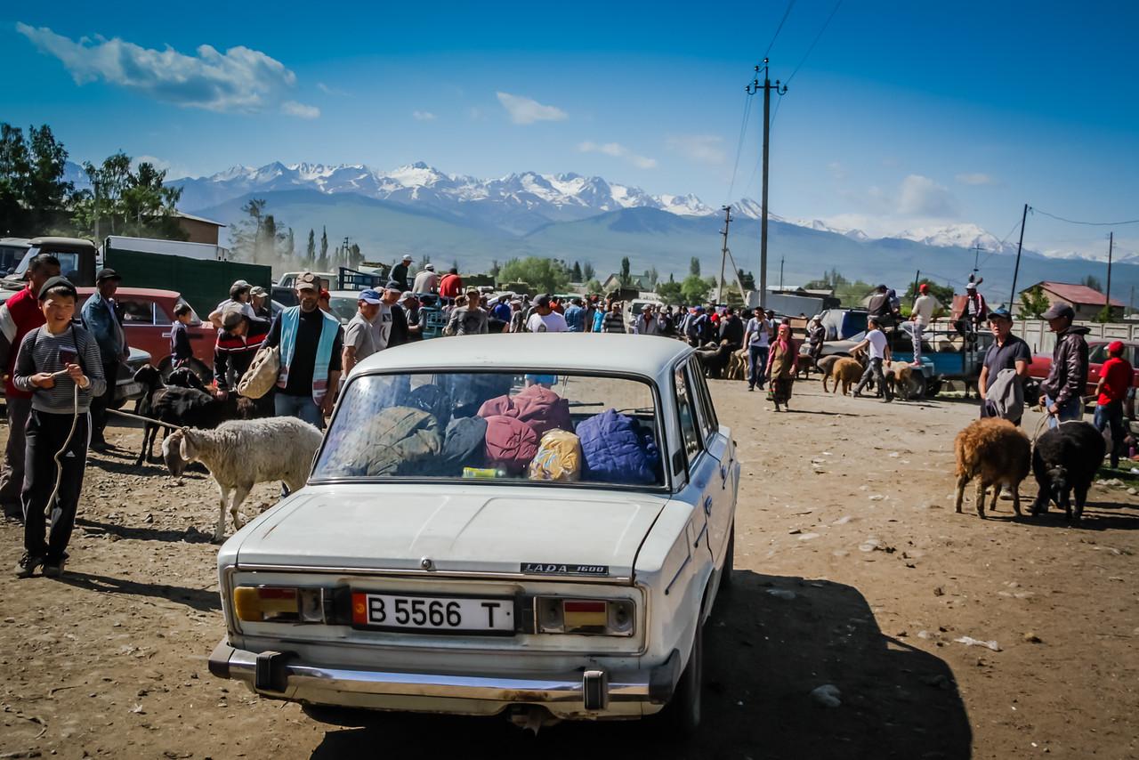 скотный рынок