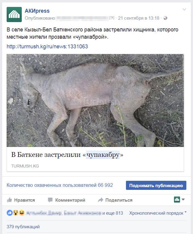 Пост о чупакабре в аккаунте АКИpress в Фейсбуке