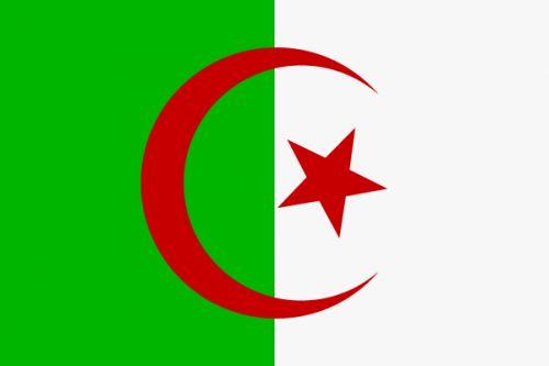 Флаг Алжира / фото из Интернета