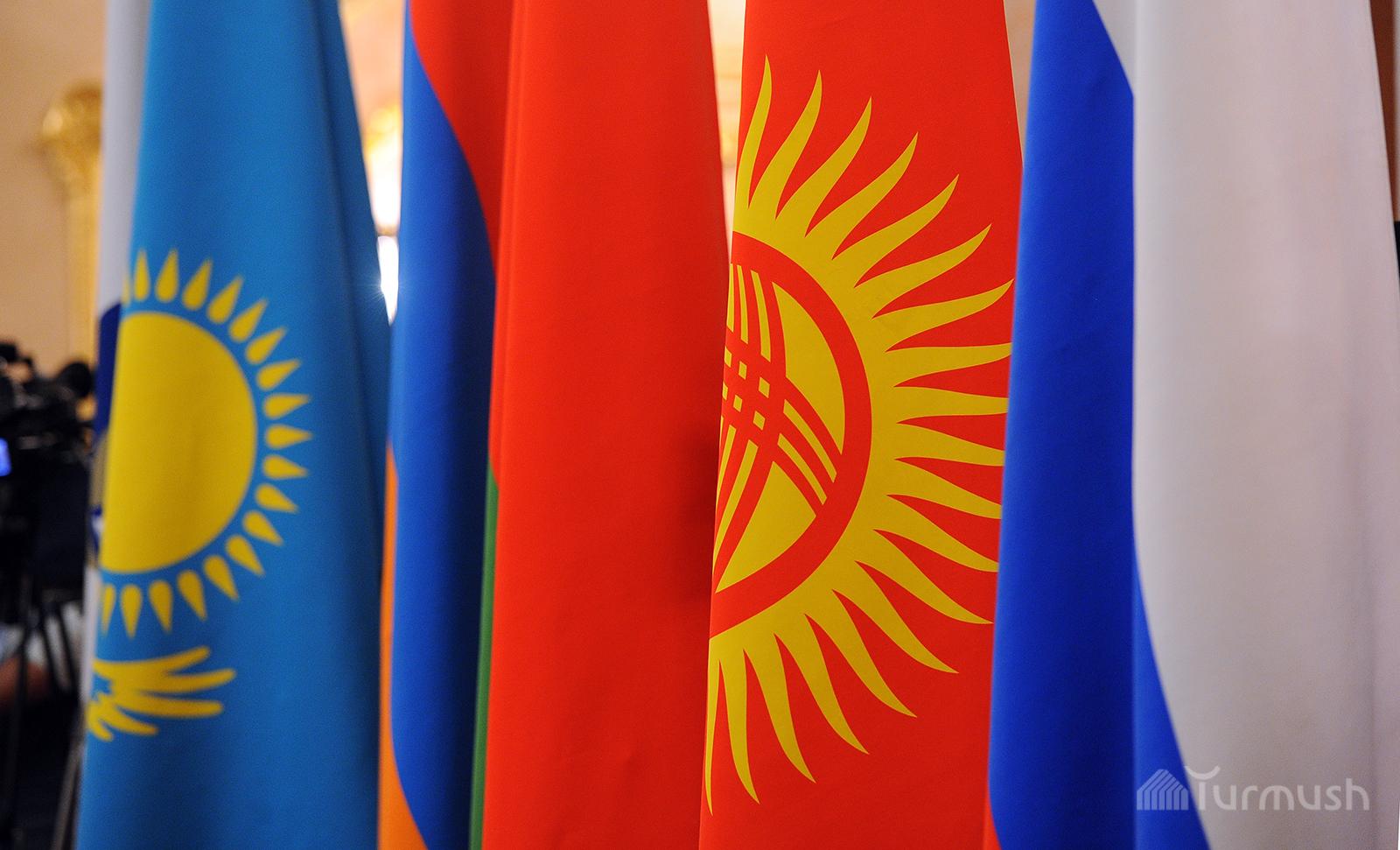 государства члены евразийского союза