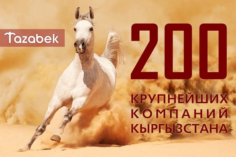 Мобильно, удобно, выгодно: Электронный журнал о 200 крупнейших компаниях Кыргызстана