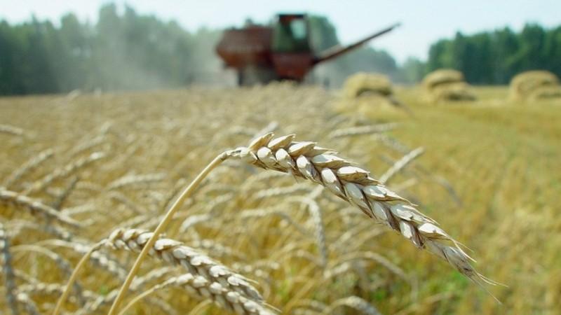 Н.Назарбаев сомневается, что выпускницы аграрных университетов поедут работать в села