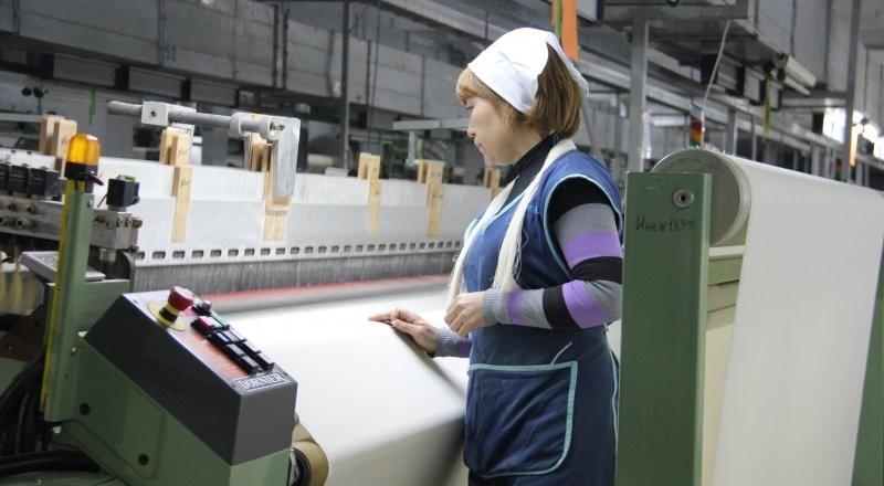 В регионах Кыргызстана насчитывается 39 простаивающих предприятий, - Минэкономики