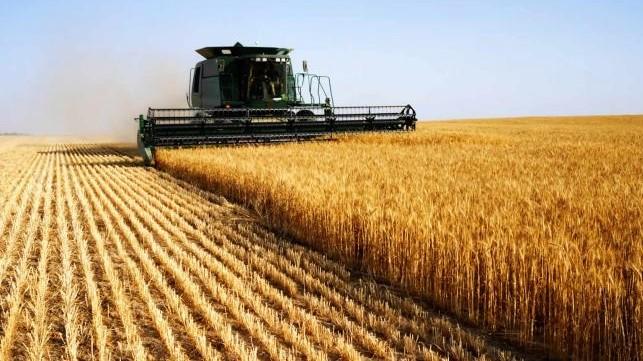 Правительство определило, сколько денег нужно направить на растениеводство и переработку  в рамках проекта «Финансирование сельского хозяйства - 5»