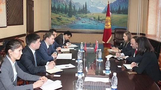 Министр А.Новиков сообщил о готовности Кыргызстана увеличить поставки фасоли в Турцию