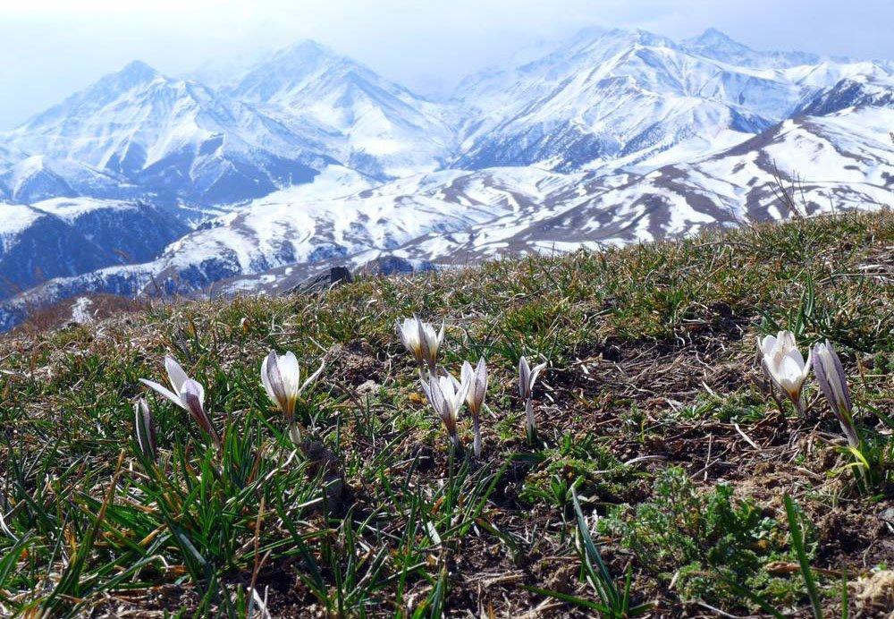 В горах Кыргызского хребта / ТУК