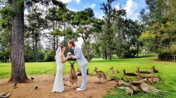 Australia-wedding-1024x576