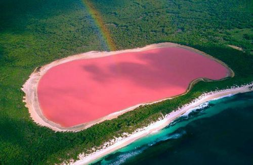 liqeni_hillier_-_roze