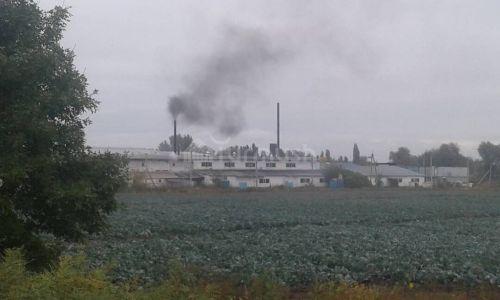 Фрунзе айылындагы завод