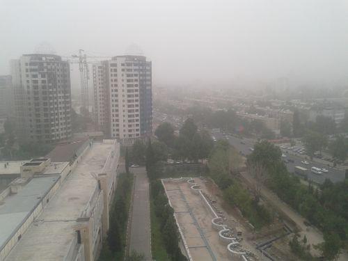 тадж_пыльная буря3
