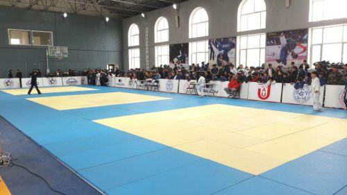Фестиваль дзюдо в Сокулуке