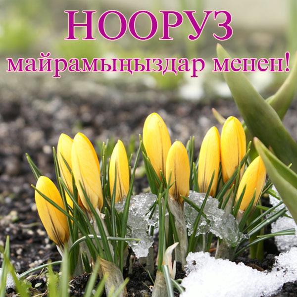 поздравления с праздниками нооруз