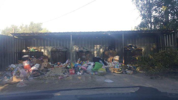В МТФ мусорные баки возле детсада переполнены,– читатель <i>(фото)</i>