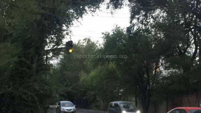 На перекрестке Жукеева Пудовкина и Горького неправильно работает светофор (видео, фото)