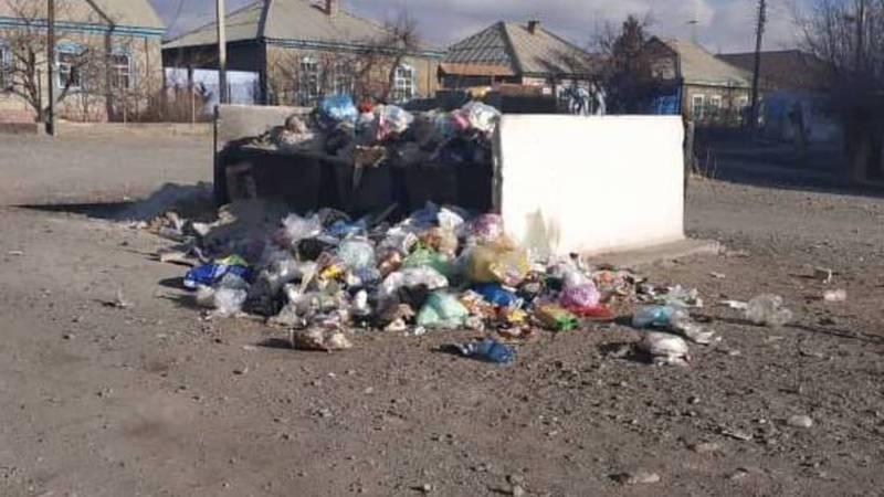 В городе Балыкчи на улице Осмонова не вывозят мусор, - местный житель (фото)
