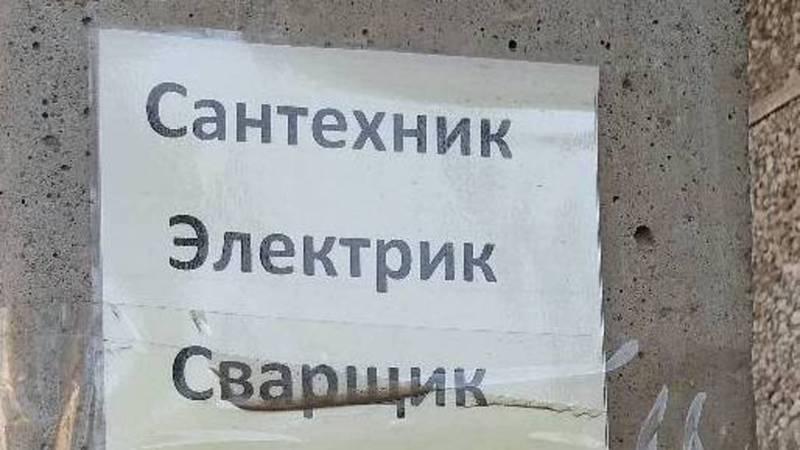 В Бишкеке расклеивают рекламные листовки на столбах, - горожанин (фото)