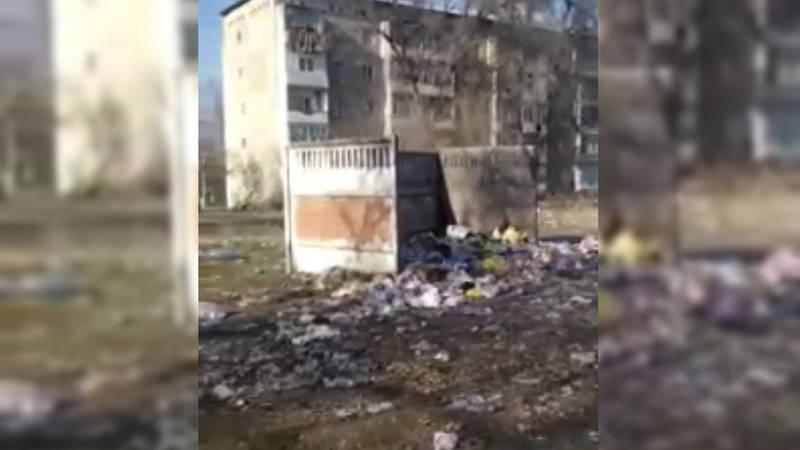 Мусор на улице Добровольского в селе Беловодское убирают два раза в неделю