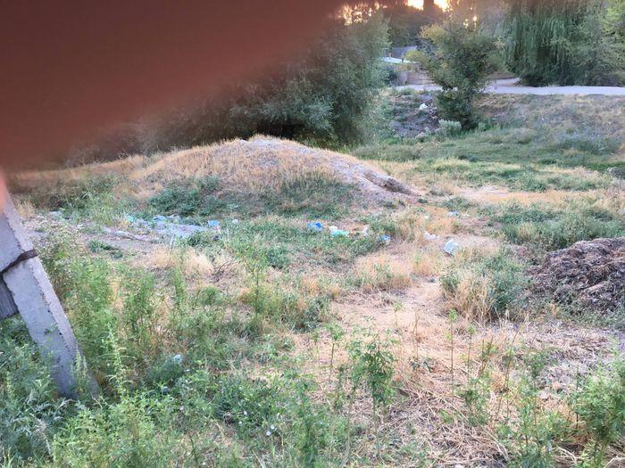 Водоем в селе Комсомол завален мусором (видео)