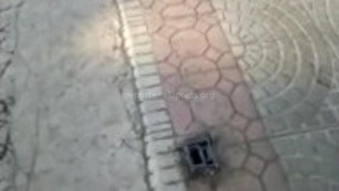 Незаконно установленные металлические стойки на ул.Буденного демонтируются без выдачи уведомления, - мэрия