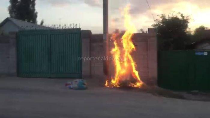 На ул.Курманжан Датки мусор сжигают на тротуаре <i>(видео)</i>