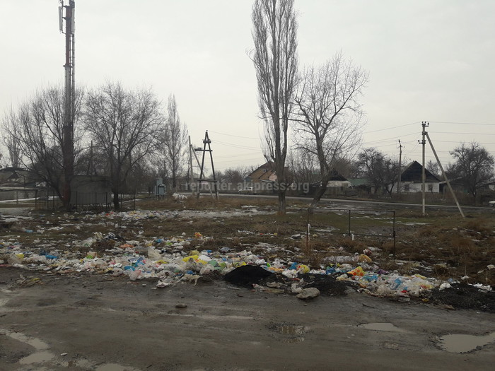 Администрация Орокского айыл окмоту не предпринимает никаких действий для уборки села от мусора, - читатель (фото)