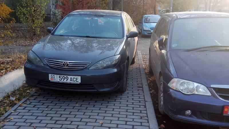 «Доска позора». Любители парковаться на пешеходных дорожках и прочих нарушений