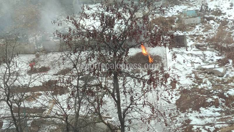На Исанова-Рыскулова строители сжигают мусор и ветки? (фото)