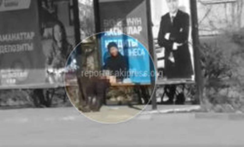 Рукоблудство в Караколе. Иссык-кульская милиция нашла нарушителя