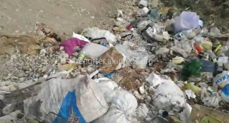 Жители села Таш-Башат сняли репортаж о мусорной свалке с просьбой перенести ее (видео)