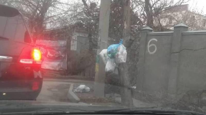 На улице Жукеева-Пудовкина оставляют мусор на улице. Фото