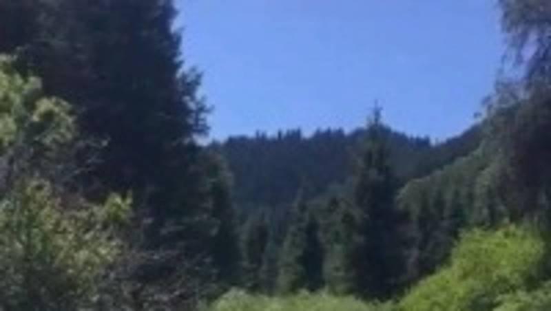 Красота Каракольского ущелья. Видео местного жителя