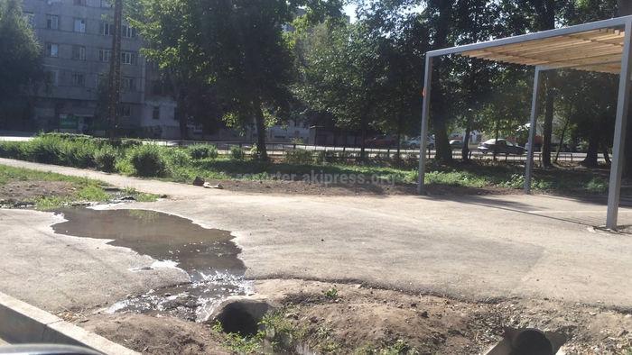 В ближайшее время затопление тротуара в парке им.Фучика будет устранено, - мэрия Бишкека