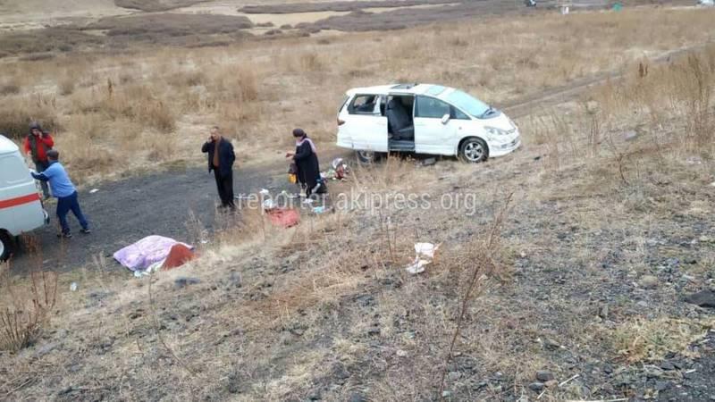 В Суусамыре «Тойота Эстима» слетела в кювет. Пострадала женщина (фото)