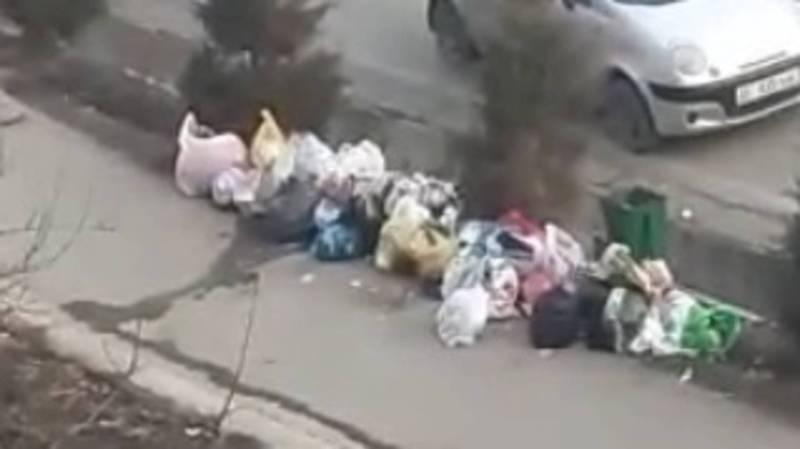 На ул.Монуева в Оше жители бросают мусор на улицу. Видео