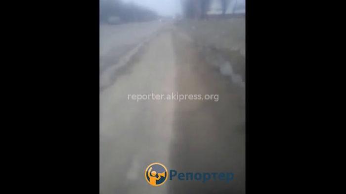 Кок-Жар айылында жерден чыккан суу токтотулду, - Чуй обладминистрациясы