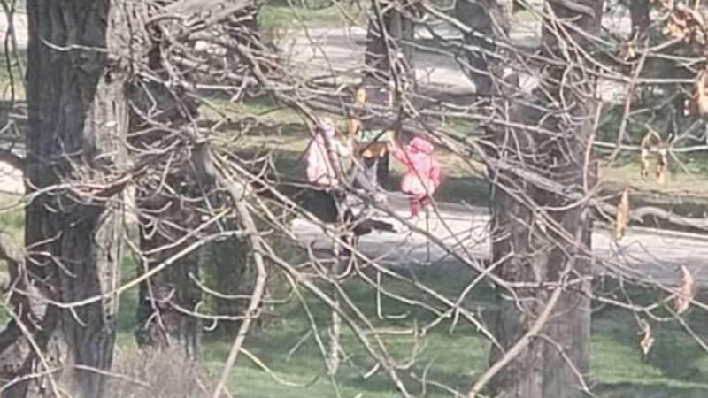 На бульваре Молодой Гвардии во время карантина мамы гуляют с детьми. Фото
