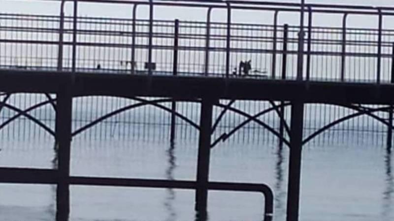 В одном из пансионатов на Иссык-Куле в озеро сливают стоки - очевидец