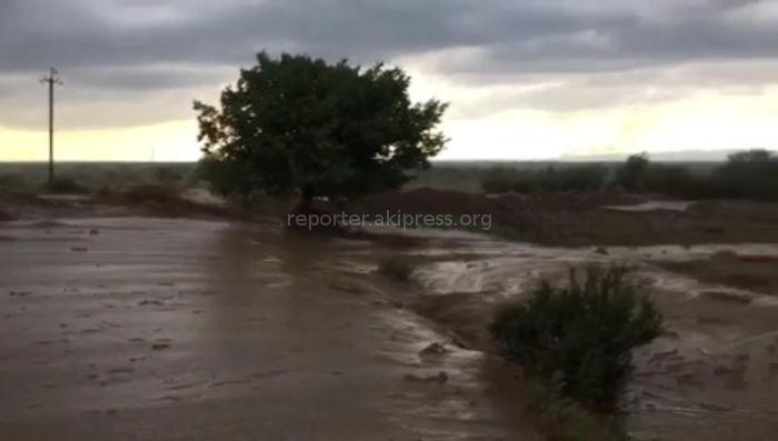 Видео — В Иссык-Атинском ущелье сходят сели