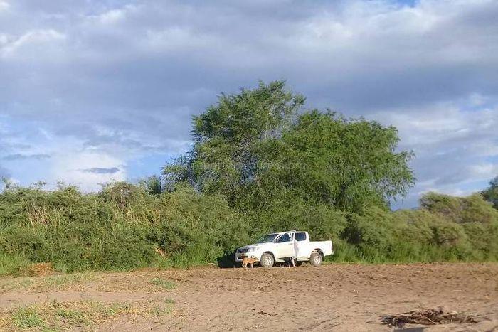 Фото — В Чолпон-Ате машина припарковалась на пляжной зоне