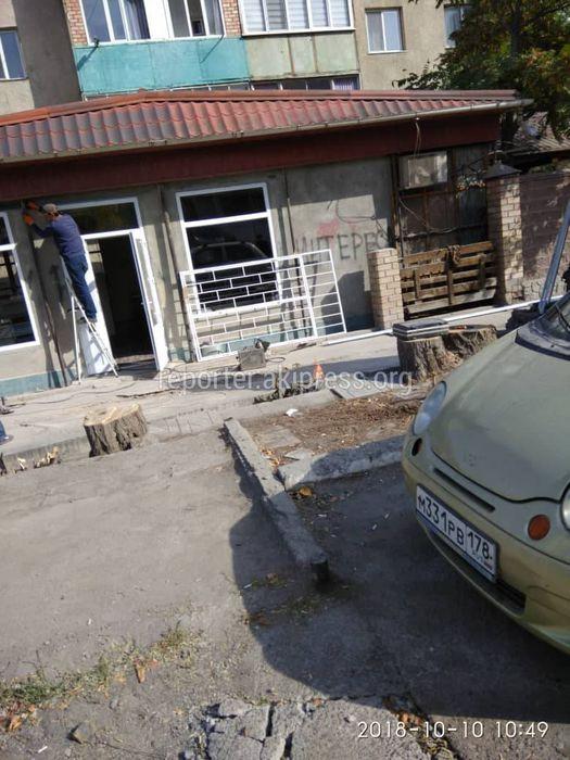 Законно ли спилили деревья на участке улицы Салиевой в Аламедине-1?
