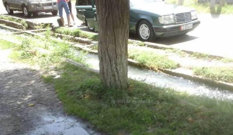 Мыть машины и ковры в городских водоемах и арычных сетях запрещено, - мэрия Оша