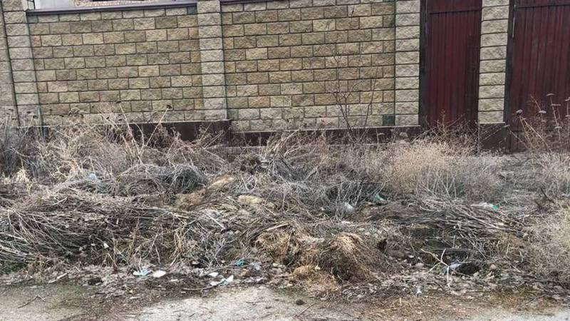 В Бишкеке на улице Толомуша Океева долгое время не убирается мусор, - горожанин (фото)