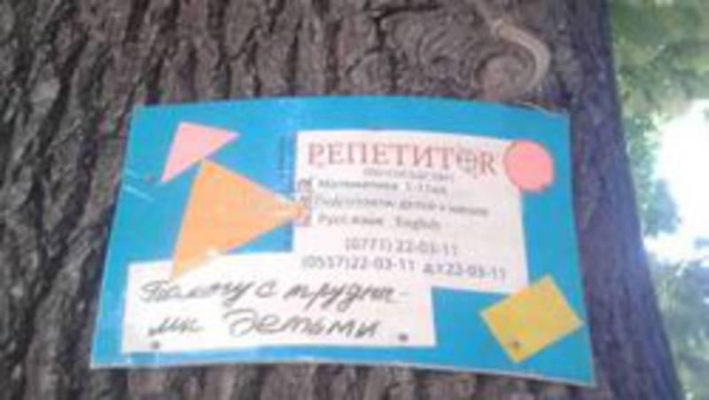 Прибитые объявления к деревьям на Коммунарова, Азовской, Кудрука убраны, - Госэкотехинспекция