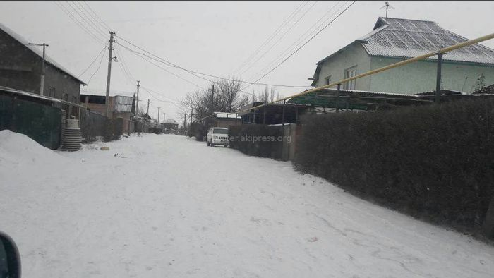 Жители жилмассива Колмо просят газифицировать дома с левой стороны по ул.Биримдик (фото)